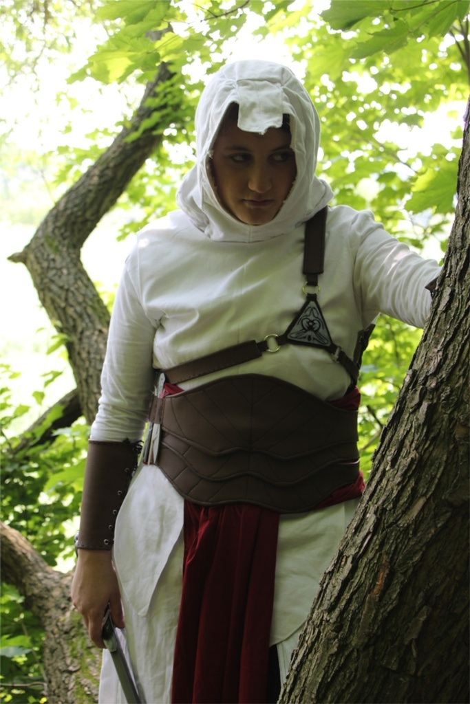 Assasin's Creed Cosplay